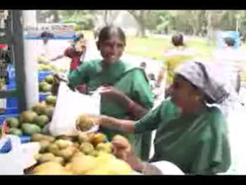 29 05 2014 report on mango and jack fair 2014 in lalbag bangalore
