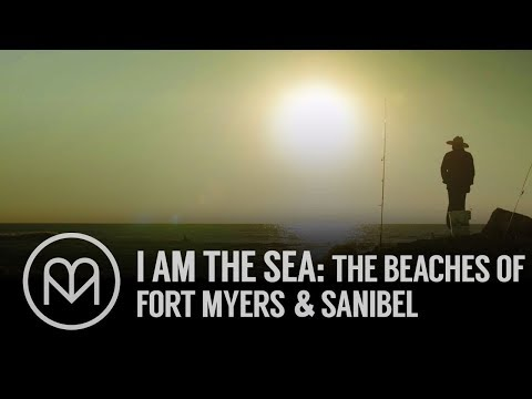I Am the Sea: The Beaches of Fort Myers & Sanibel