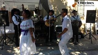 Juan Colorado - Chirrines Con Tololoche 818-290-4645