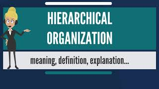 What is HIERARCHICAL ORGANIZATION? What does HIERARCHICAL ORGANIZATION mean?