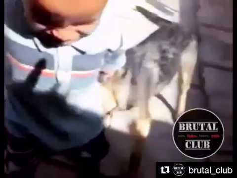 Месть ребенка