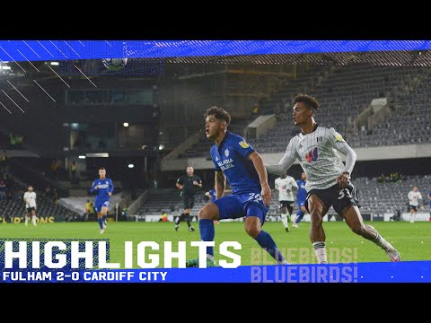 Fulham Cardiff Goals And Highlights