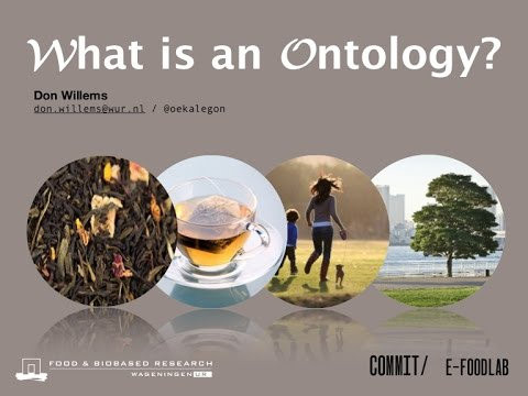 Ontology in Computer Science