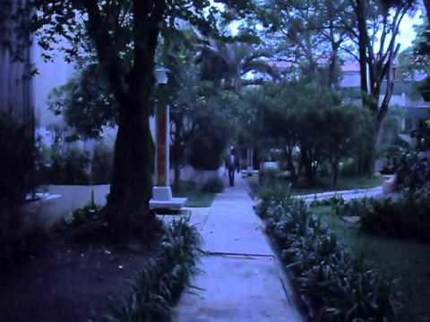 Bosques De La Aguacatala Wmv Youtube