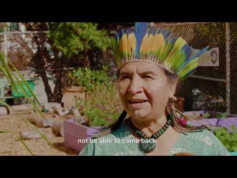Danzantes Aztec Dancers | KQED