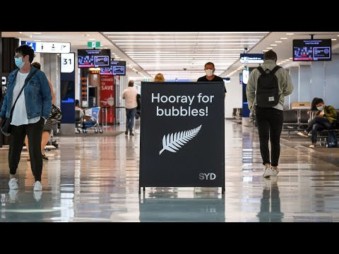 NSW plan to reopen borders 'music to tourism industry's ears'