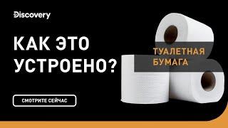 Туалетная бумага | Как это устроено | Discovery