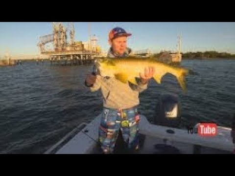 IFISH -Brisbane River Threadfin Salmon Full episode