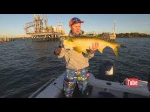 IFISH -Brisbane River Threadfin Salmon Full Episode
