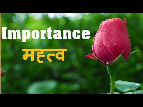 Importance मह्त्व  HINDI MOTIVATIONAL THOUGHT VIDEO