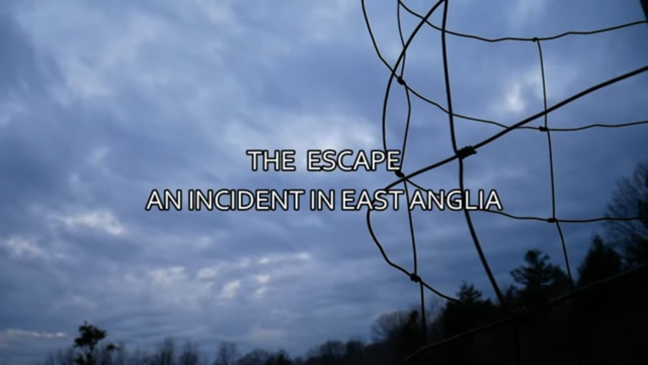 """""""The Escape 