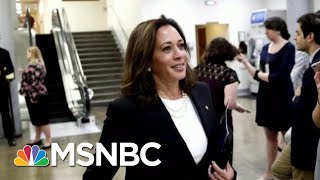 What Kamala Harris' Announcement Means For Democrats | Morning Joe | MSNBC