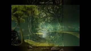 Ocean Rose - Tim Janis