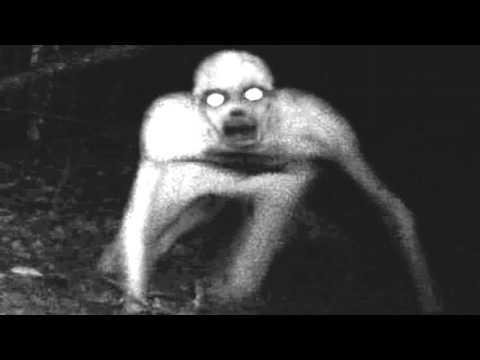 creepypasta � the rake lektor pl youtube