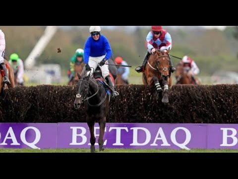 Woodland Opera - Punchestown 2017 Novice Handicap Chase (Build Up,Race & Reaction) [28/04/17]