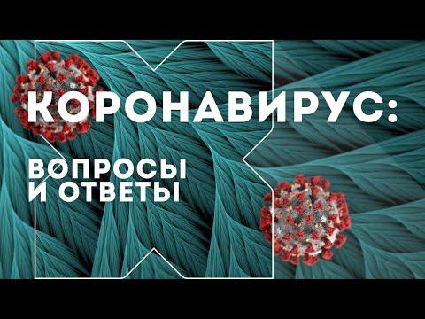 Как работают стоматологи в период пандемии коронавируса — рубрика «Коронавирус: вопросы и ответы»