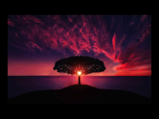 Song of joy and hope - by roberto manzoli (Canzone di gioia e speranza)