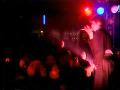 Fad Gadget - Swallow it (live)