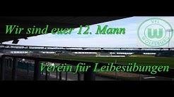 Vfl Wolfsburg Saison 2013/2014 (Kader)