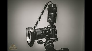 Shooting Macro w/ Godox ML-150 ring flash, Sony a7rii & FE90mm f2.8 Macro