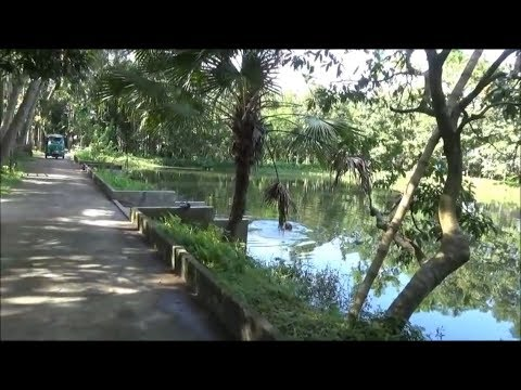 Tour of our Village/house in Akakhazna Beani Bazaar Sylhet B