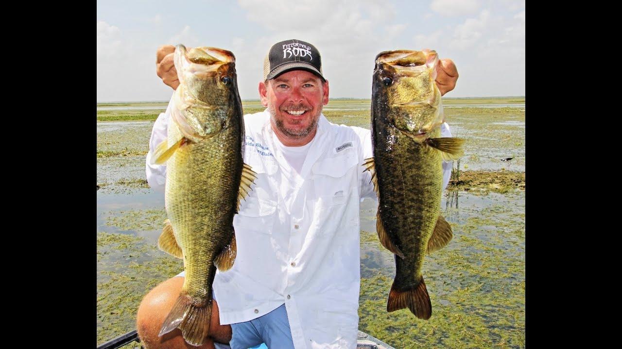 Best top water frog bass fishing video in florida lake for Top water bass fishing