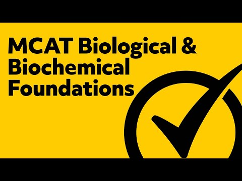 Free MCAT Biological & Biochemical Foundations Study Guide