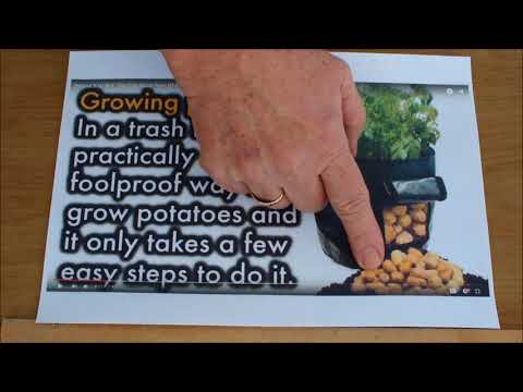 How to grow Potatoes in Recycled shopping bags.Grow Vegetables