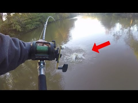 Catching BIG Catfish On A Current Seam In A FLOODED CREEK