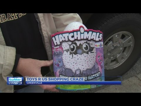 Huge Crowd Waits Hours, Pays Hundreds, For Popular Toys In Greenville
