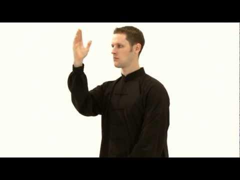 Chapitre 1 quelques mouvements de tai chi pour r duire le for Le stress