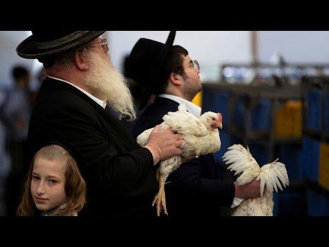 شاهد: يهود يحيون -يوم الغفران- بتلويح الدجاج الحي فوق رؤوسهم…  - 23:53-2019 / 10 / 7