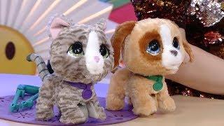 FurReal Котёнок и Щенок - Обзор Игрушек - Игроблог с Хрюшей