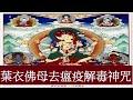 【葉衣佛母去瘟疫解毒神咒】一小時/ The Mantra of Parnashavari 1 Hour