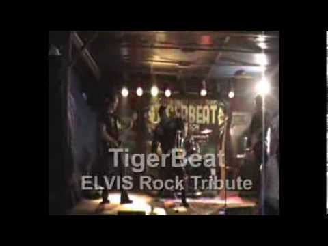 TigerBeat ELVIS Rock Tribute - Sporting Rivoli (TO)