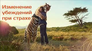 Изменение убеждений замешанных на страхе   психотерапевт Александр Кузьмичев