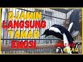 Suara Pancingan Kacer Poci Gacor Ngeplong Nembak Isian Mewah Bagus Buat Kacer Yang Males Bunyi  Mp3 - Mp4 Download