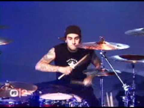 Blink 182   The Rock Show  MTV 2001  Rare