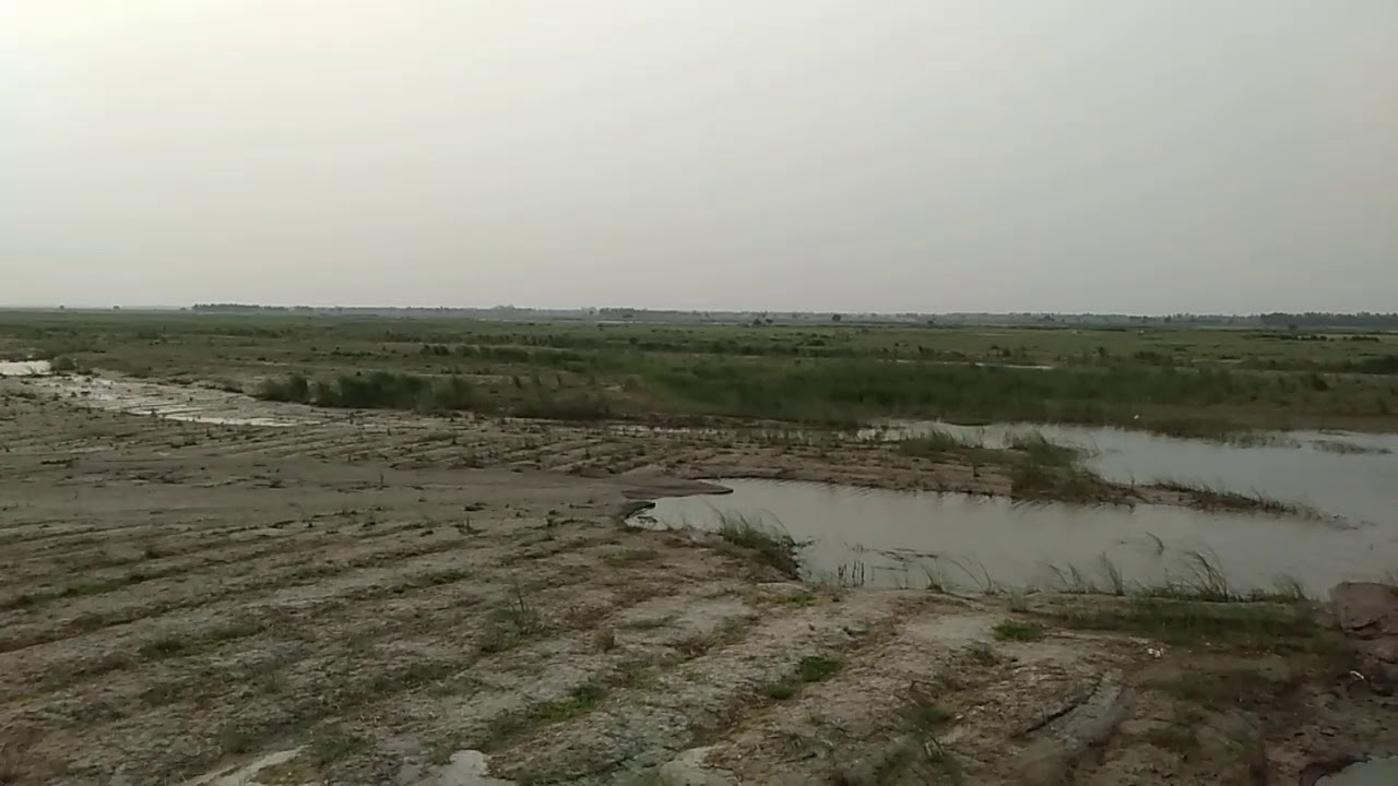 Holly river touch land in budaun up