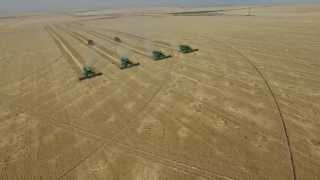 DJI Phantom 3 Professional, Idaho Grain Harvest, Vista Valley AG (Boyd Foster Farms) 2015