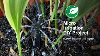 How to Install a Micro Irrigation System for Pot Plants with Holman