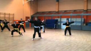 Association Paris KungFu exercice shaolin 2010/2011