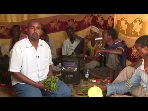 البطالة وويلات الحرب تقود آلاف الشباب الصوماليين لتخزين -القات-  - 21:21-2017 / 7 / 30