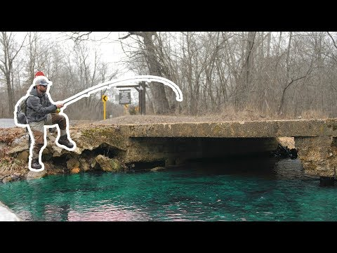 I Caught A TROPHY Fish In A TINY CREEK!!! (New PB X2)