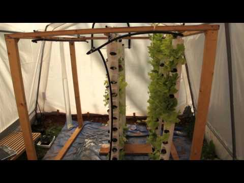 Renewable Energy Senior Project: Aquaponics System
