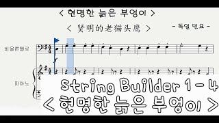 String Builder Cello 1 - 3 : 현…