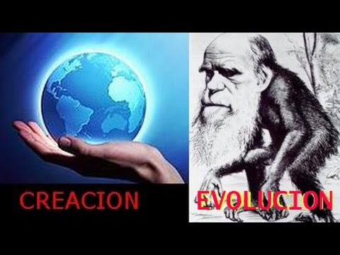 Creación contra Evolución