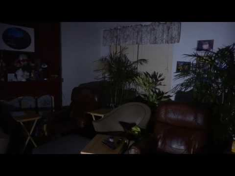 New lights & plants in the living room 2017