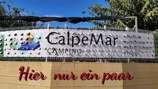 Calpe Mar  Camping (Spanien). 2017