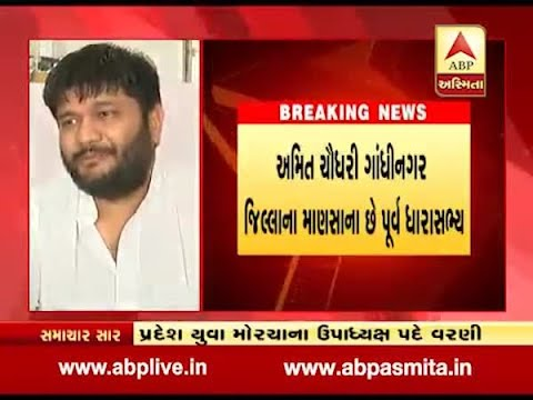 Former BJP MLA Amit Chaudhary appointed as vice president of